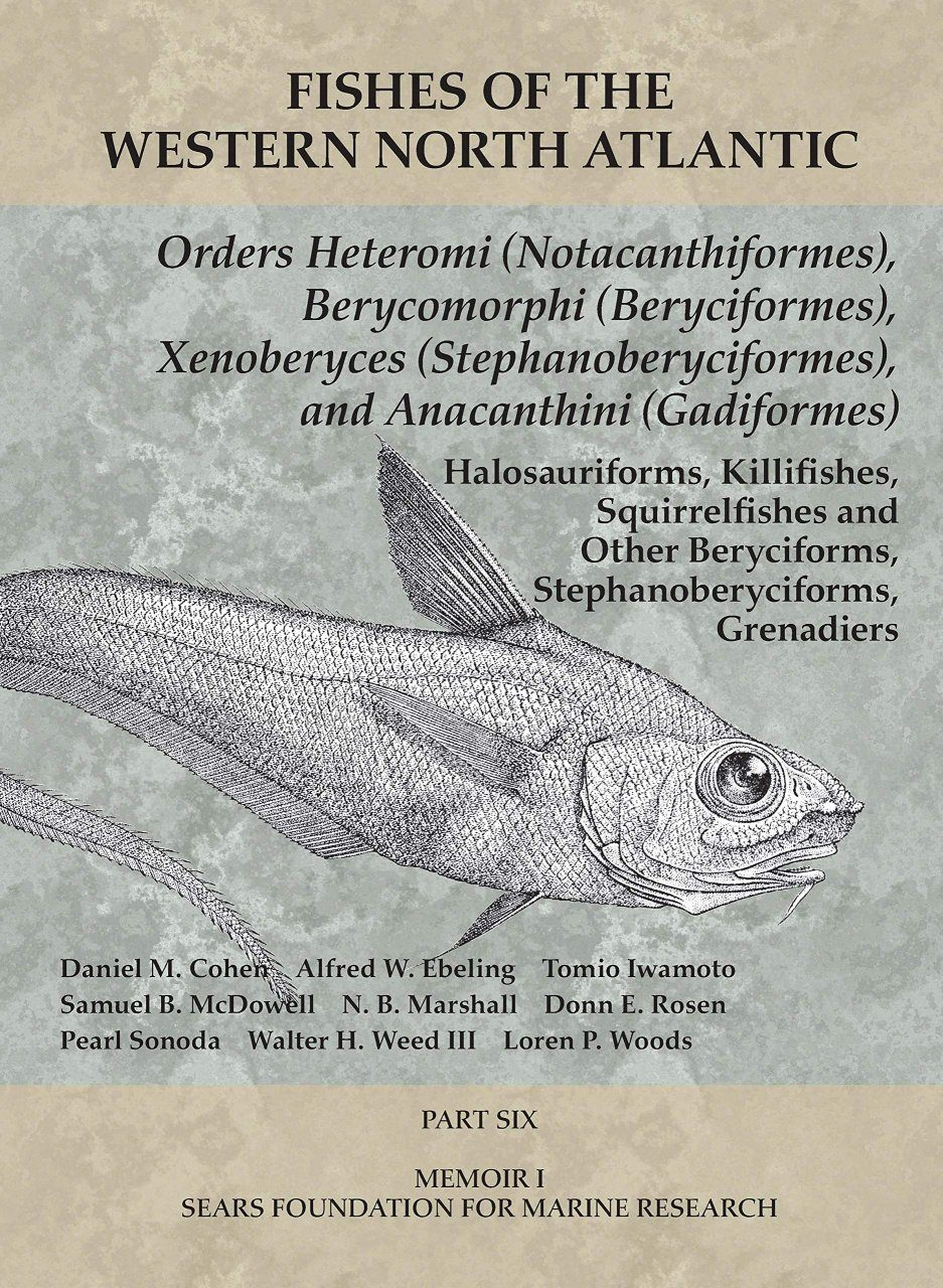 Fishes of the Western North Atlantic, Part 6
