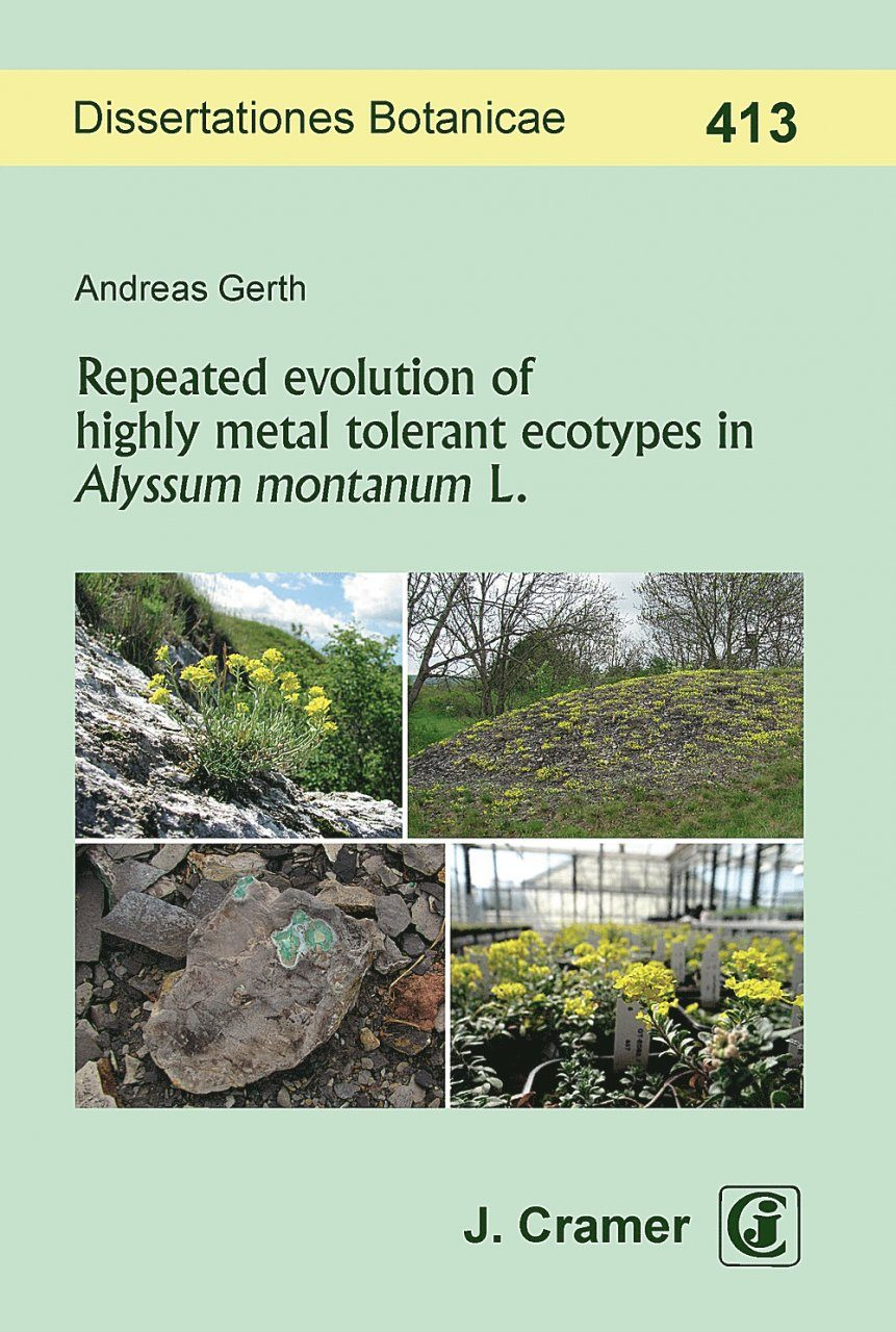 Repeated Evolution of Highly Metal Tolerant Ecotypes in Alyssum montanum L.