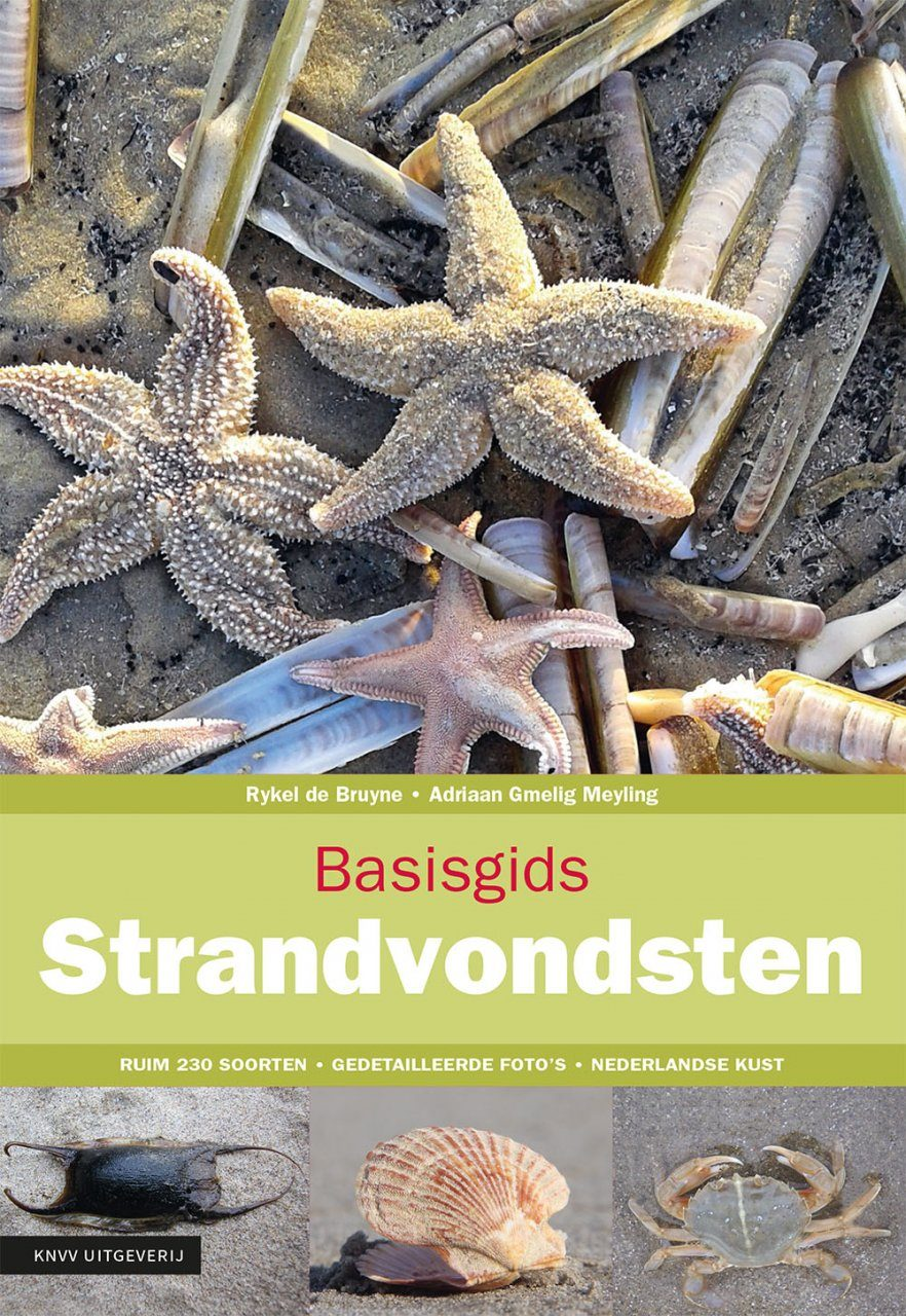 Basisgids Strandvondsten [Basic Guide to Beach Finds]