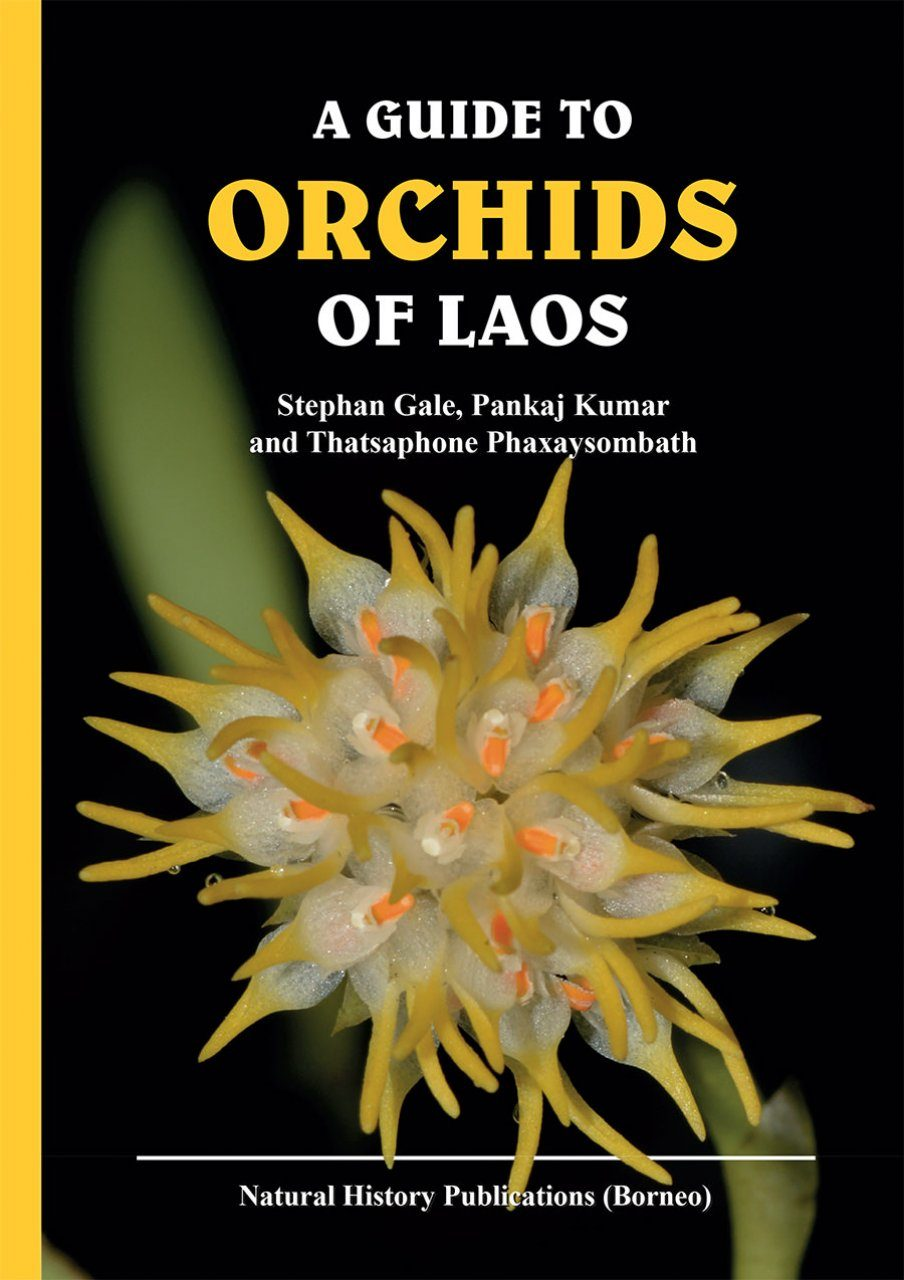 A Guide to Orchids of Laos