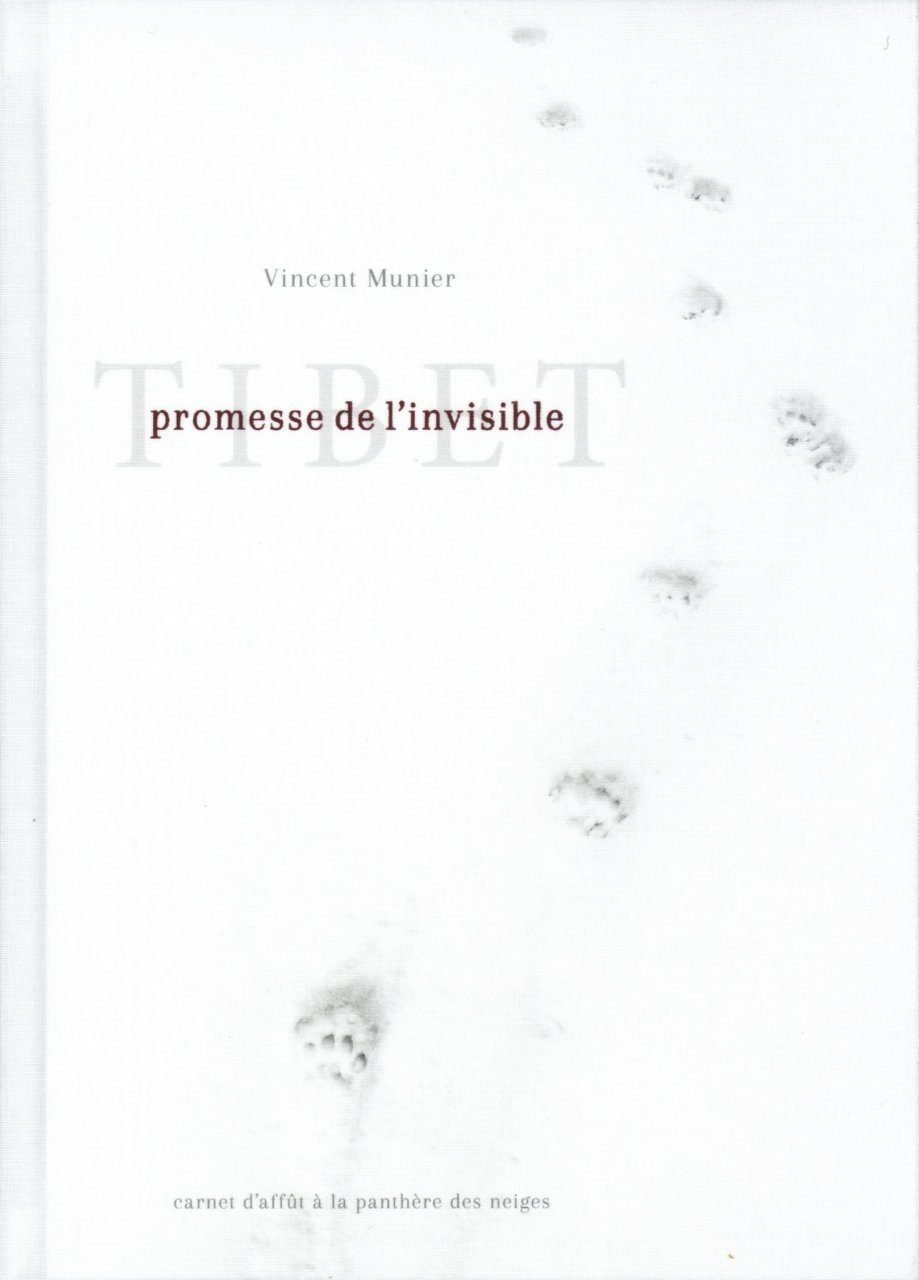 Tibet: Promesse de l'Invisible [Tibet: Promise of the Invisible]