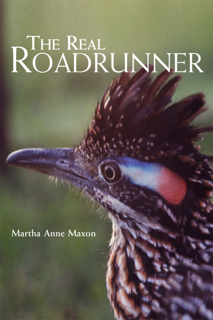 The Real Roadrunner
