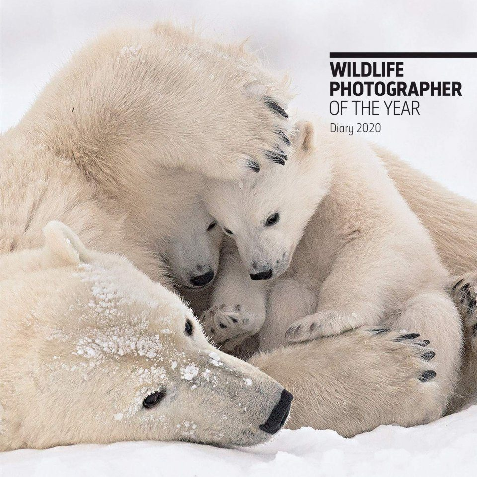 Wildlife Photographer of the Year Desk Diary 2020