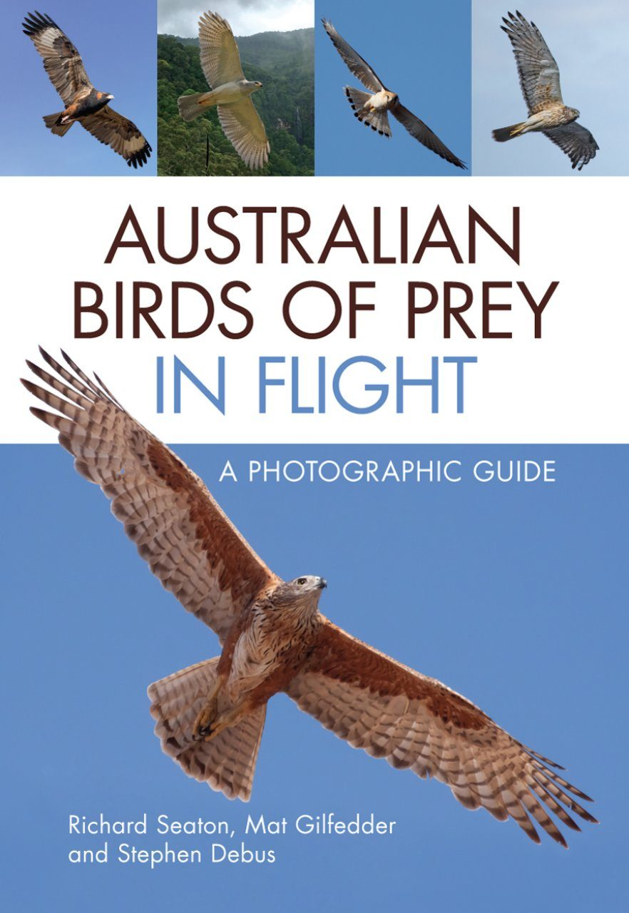 Australian Birds of Prey in Flight
