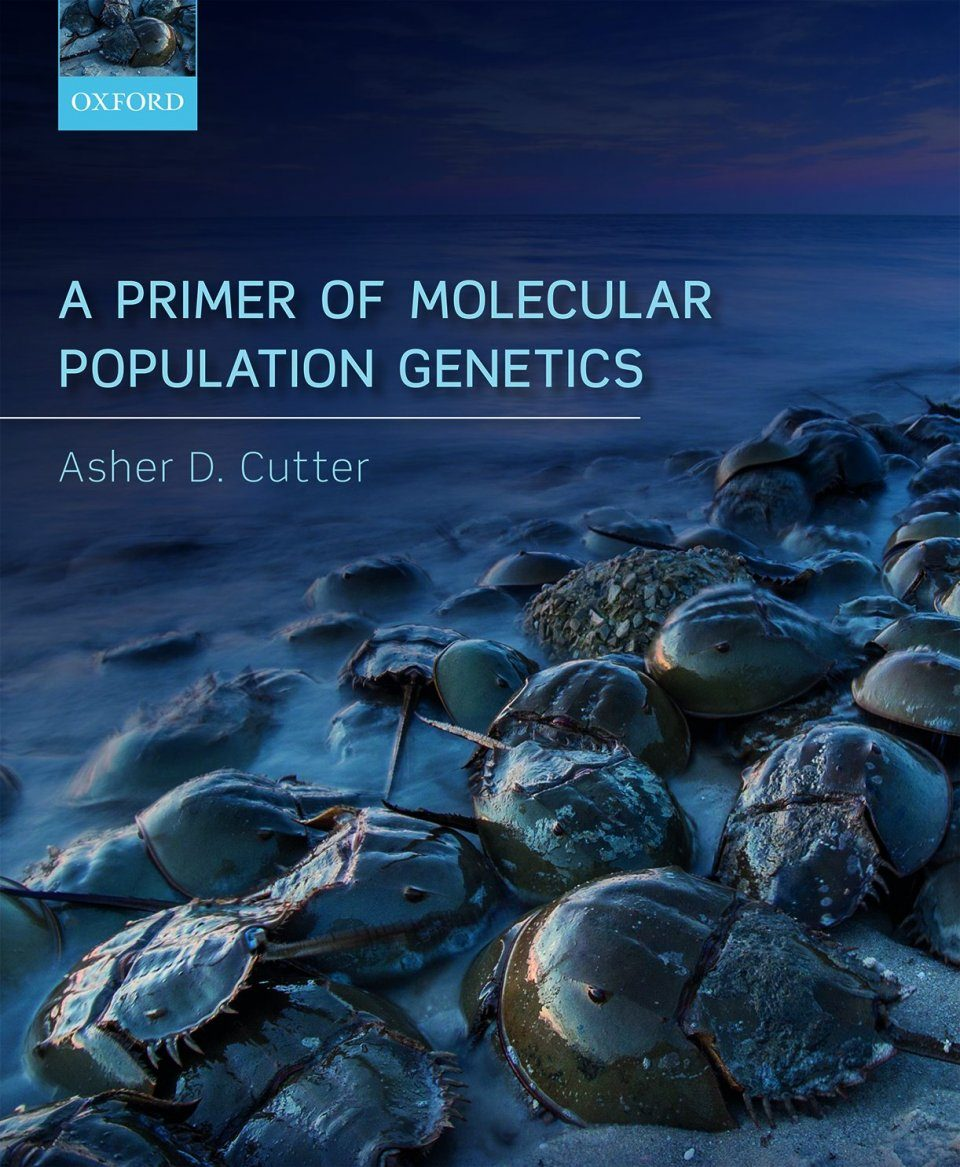 A Primer of Molecular Population Genetics