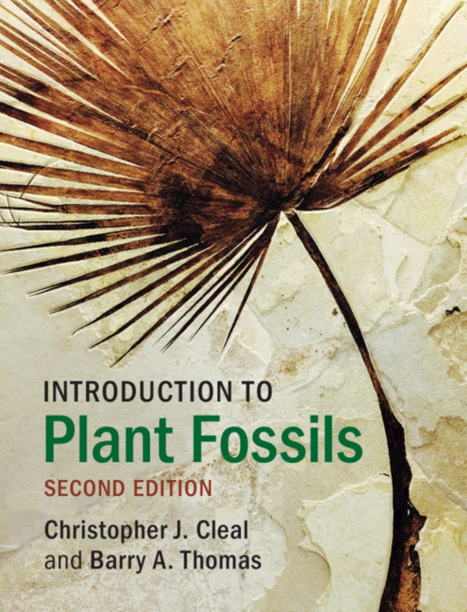 Introduction to Plant Fossils