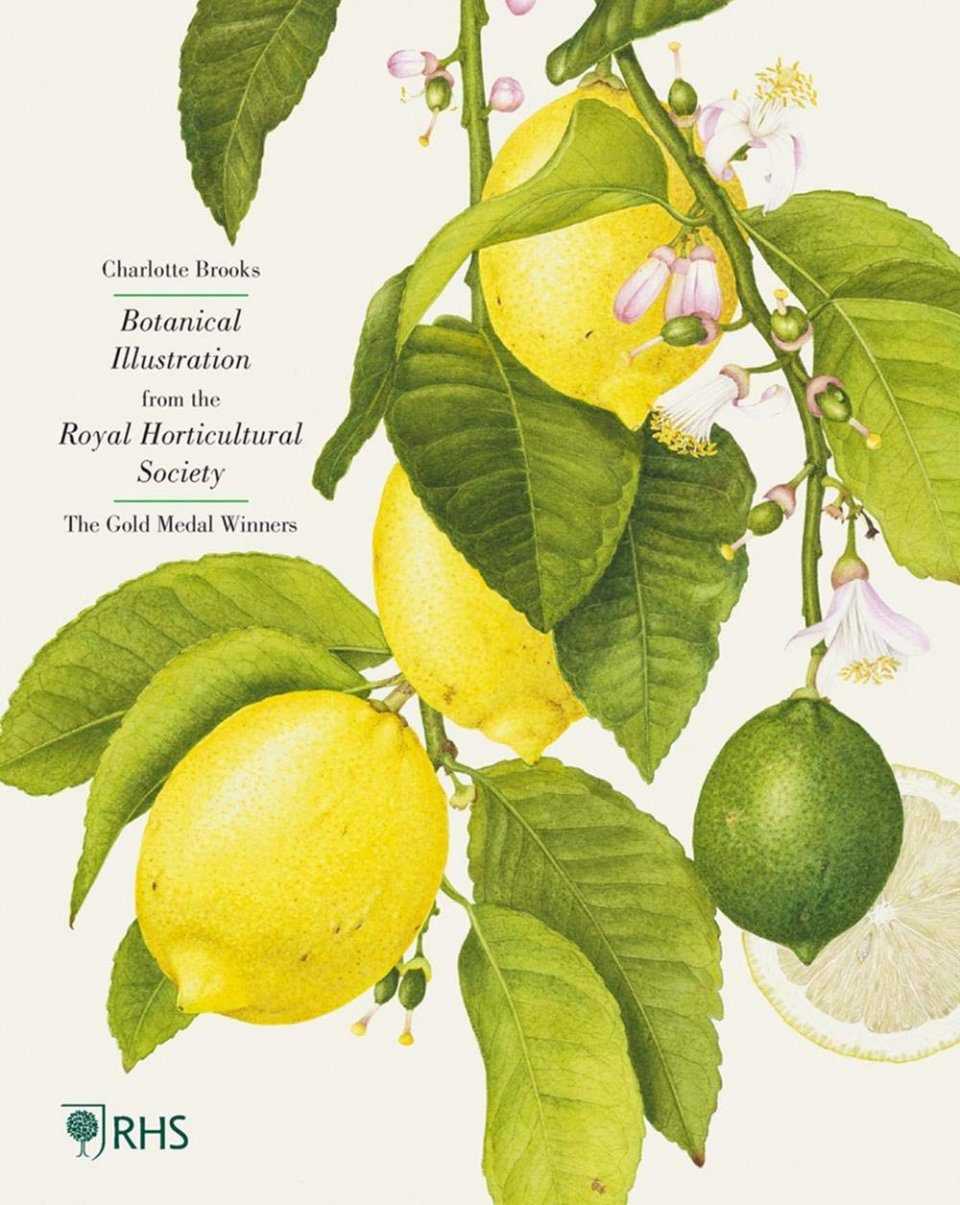 RHS Botanical Illustration