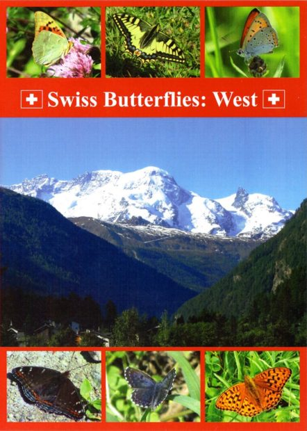 Swiss Butterflies: West (All Regions)