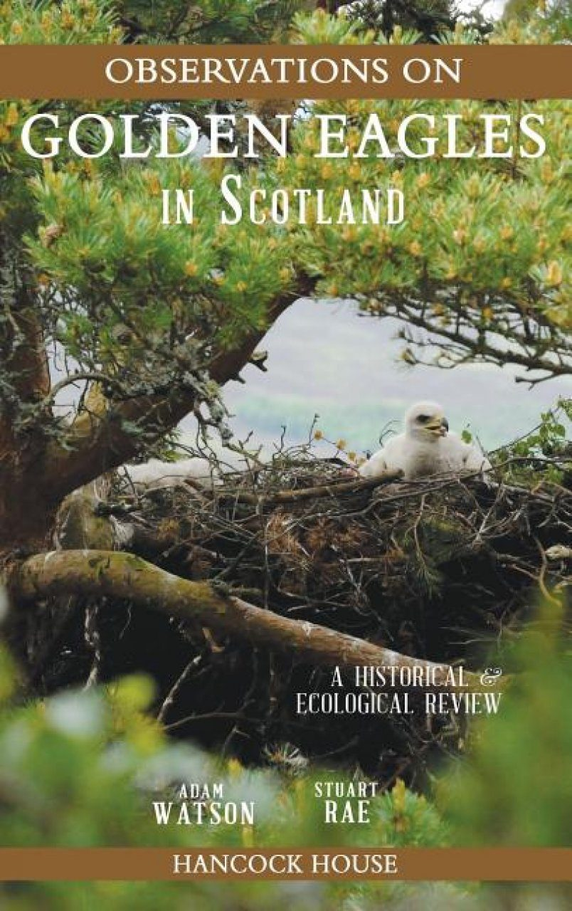 Observations of Golden Eagles in Scotland