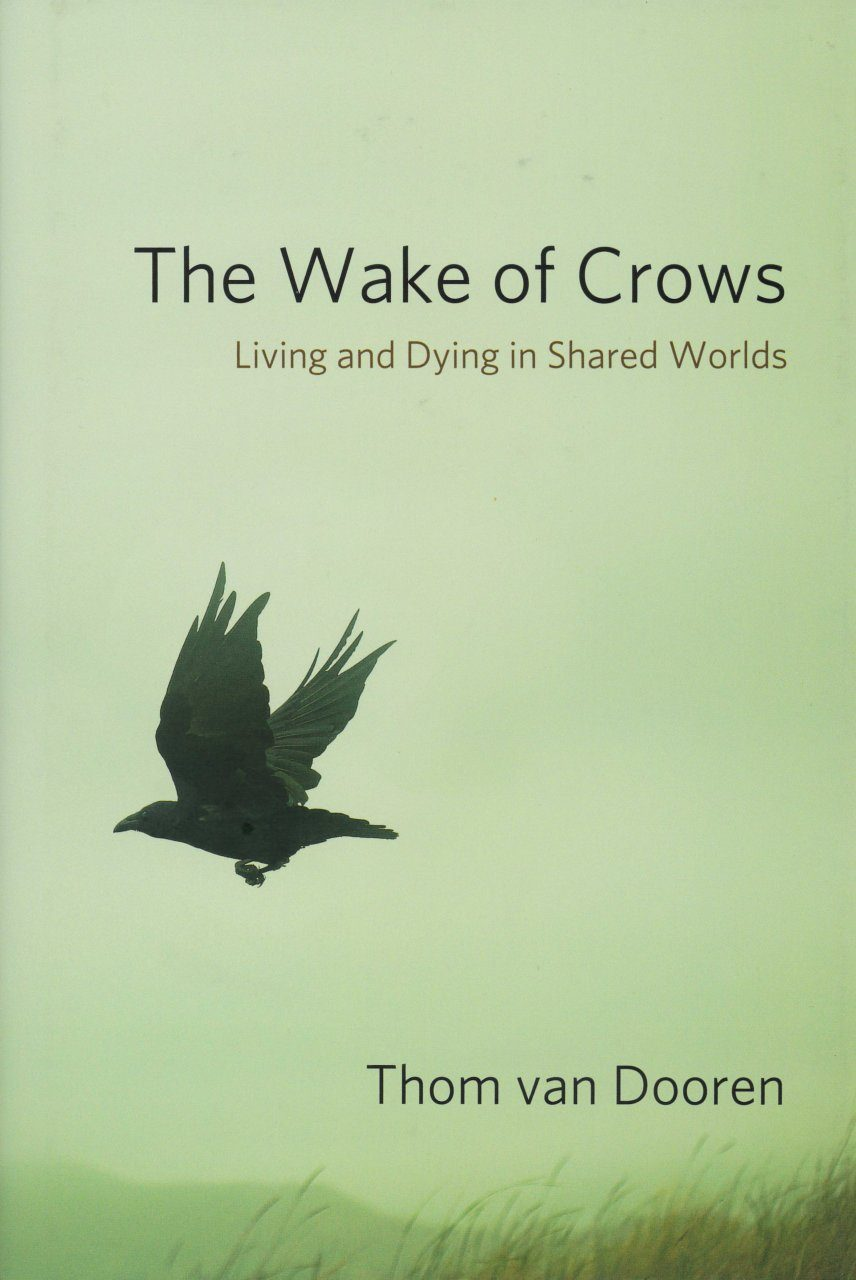 The Wake of Crows