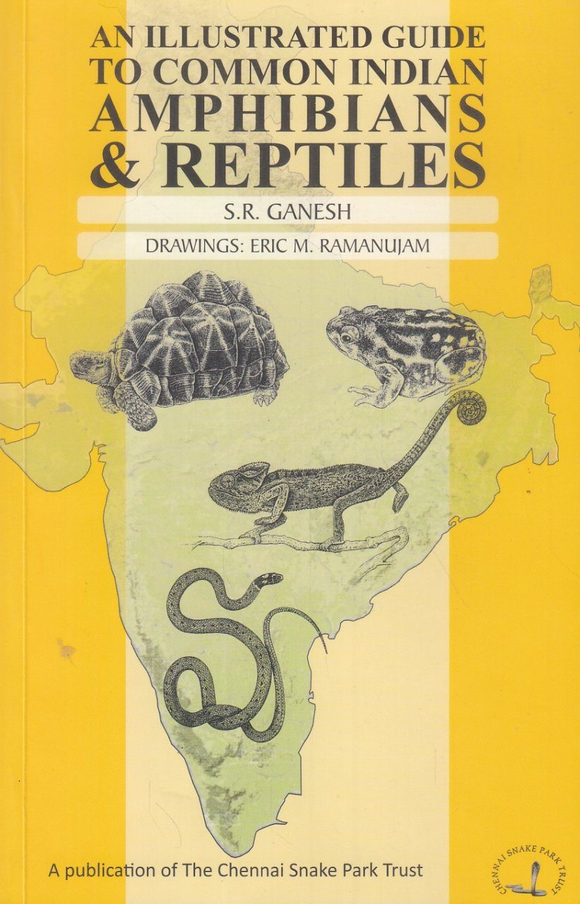 An Illustrated Guide to Common Indian Amphibians & Reptiles