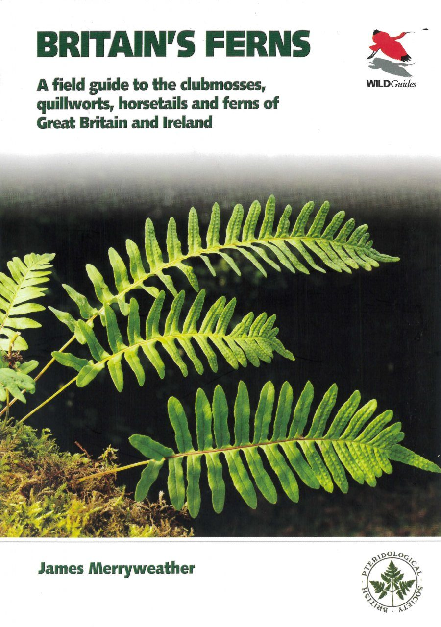Britain's Ferns, Clubmosses, Spikemosses, Quillworts and Horsetails