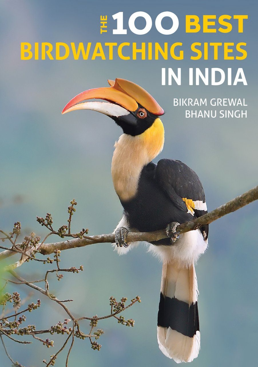 The 100 Best Bird Watching Sites in India
