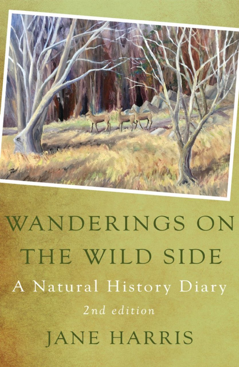 Wanderings on the Wild Side