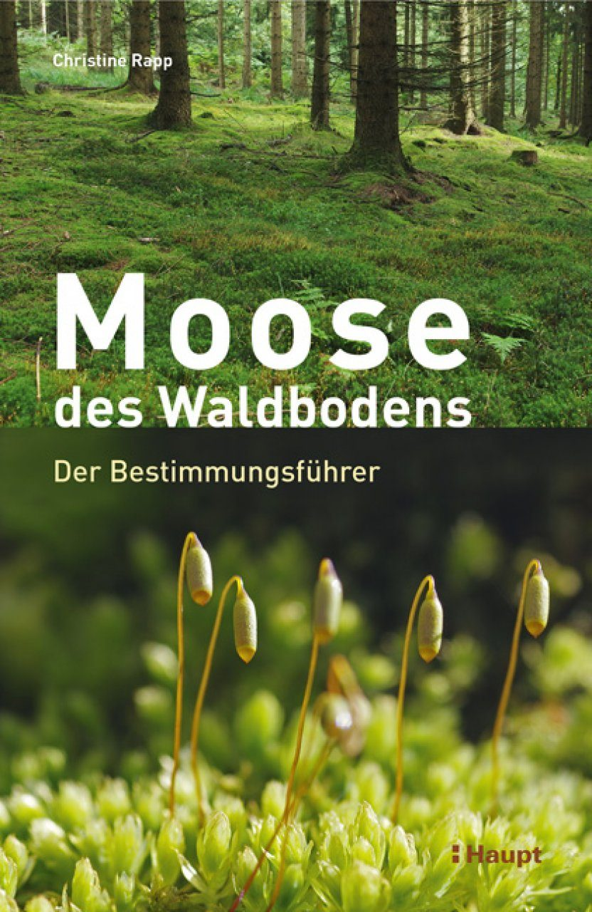 Moose des Waldbodens: Der Bestimmungsführer [Mosses of the Forest Floor: The Identification Guide]