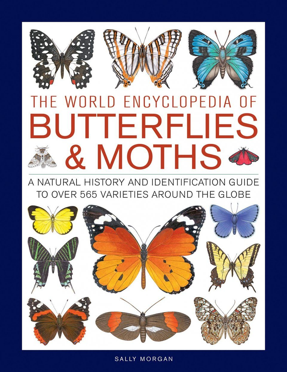 The World Encyclopedia of Butterflies & Moths