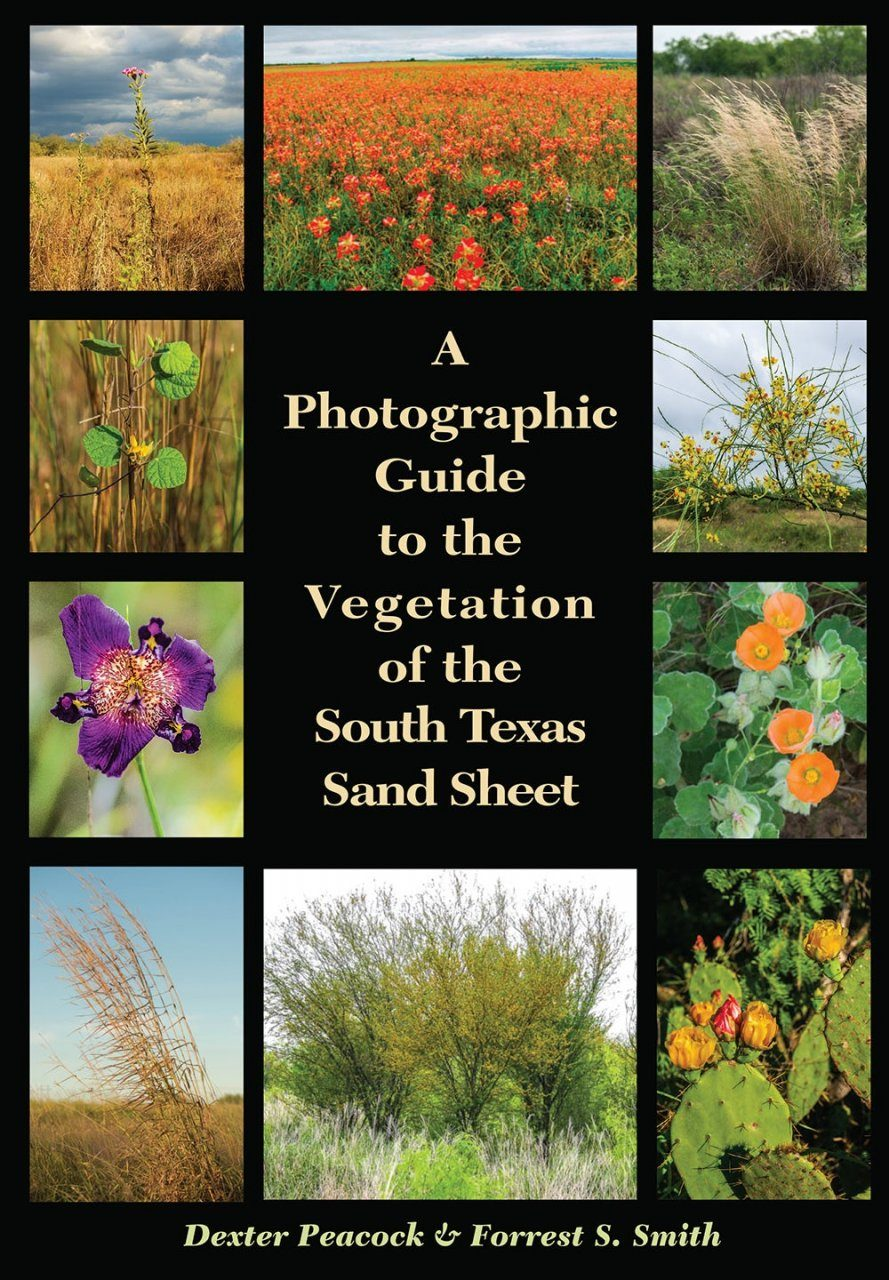 A Photographic Guide to the Vegetation of the South Texas Sand Sheet