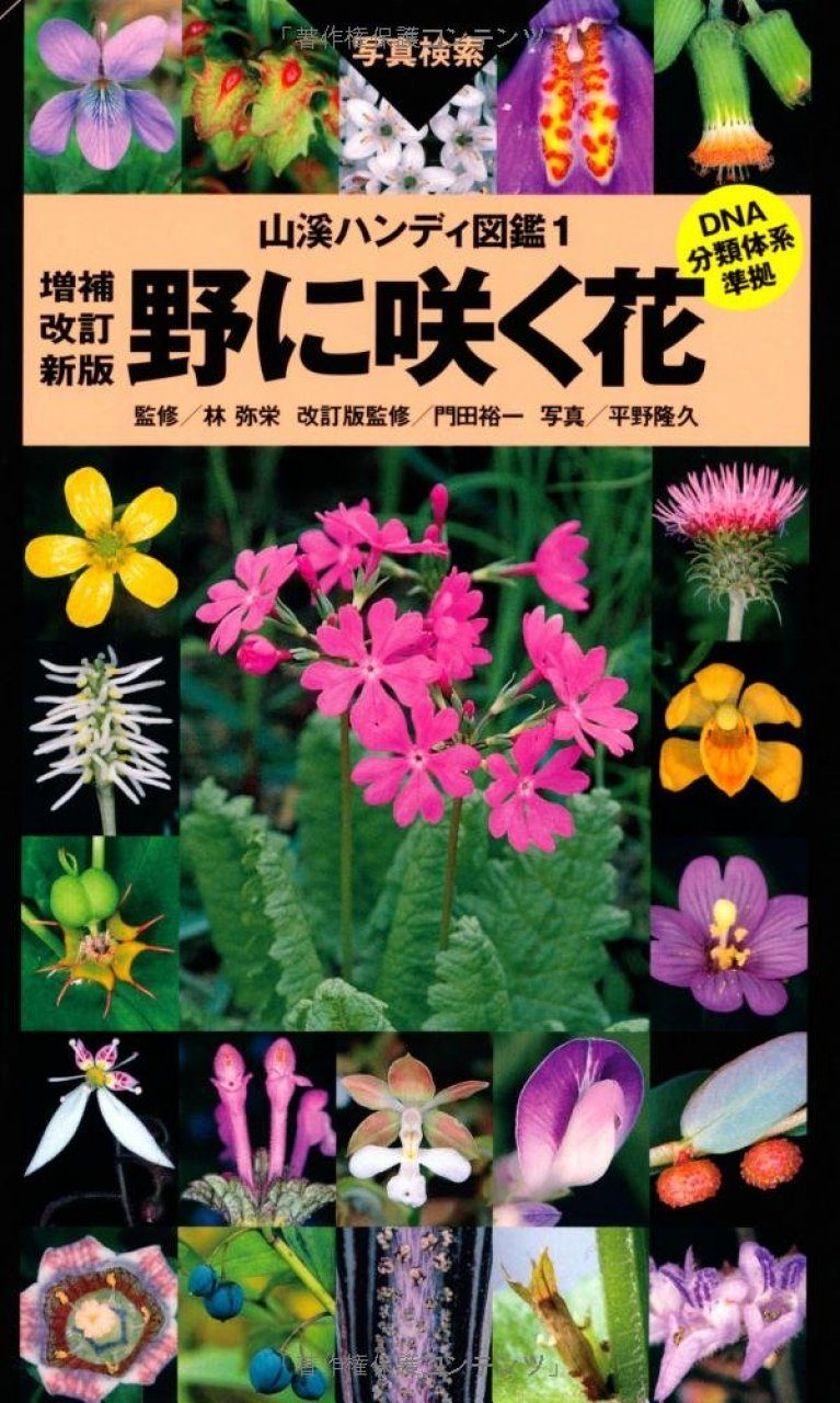 Wild Flowers of Japan (Plains, Seaside and Hills) [Japanese]