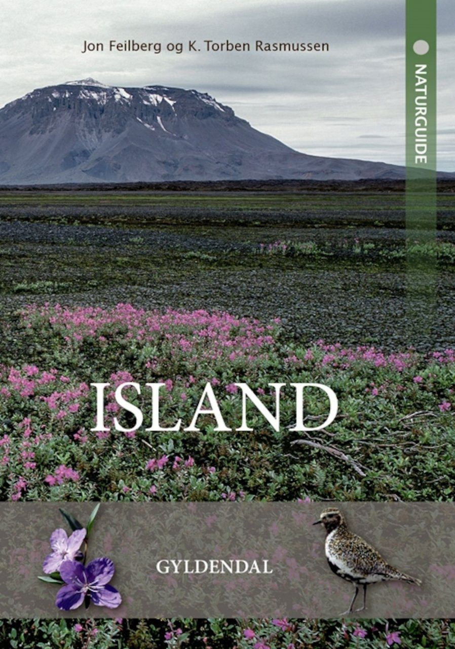 Naturguide Island [Nature Guide to Iceland]