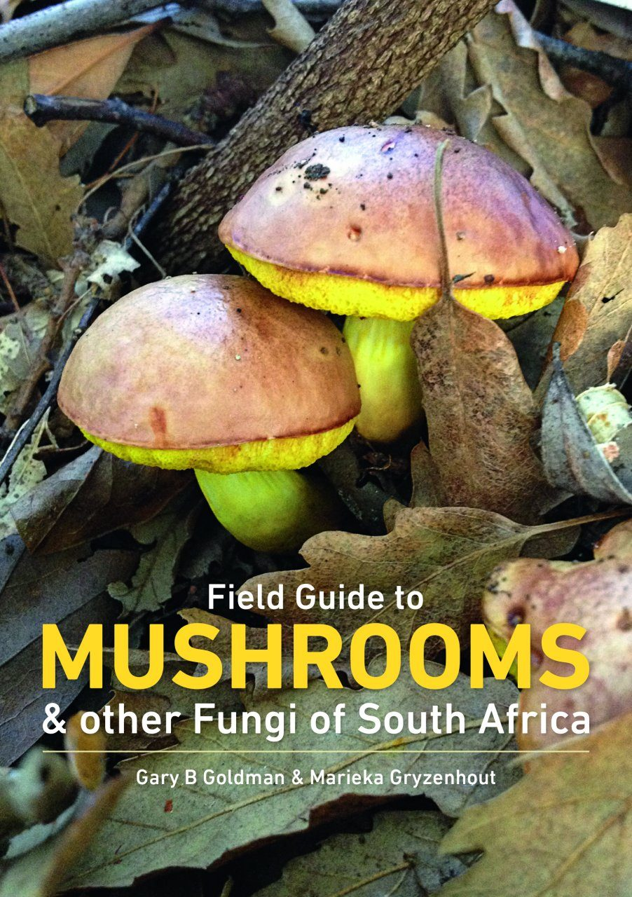 Field Guide to Mushrooms & Other Fungi in South Africa