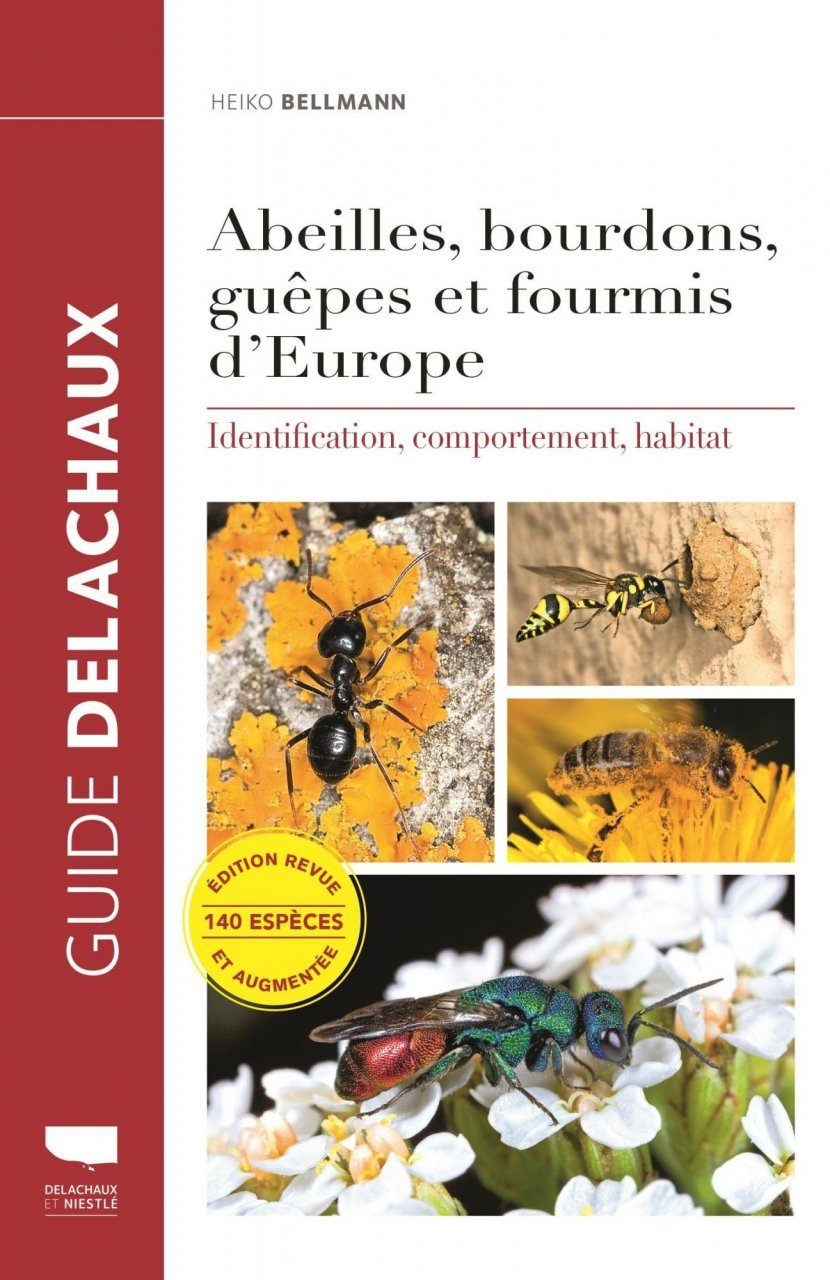 Abeilles, Bourdons, Guêpes et Fourmis d'Europe: Identification, Comportement, Habitat [Bees, Bumblebees, Wasps and Ants of Europe: Identification, Behaviour, Habitat]
