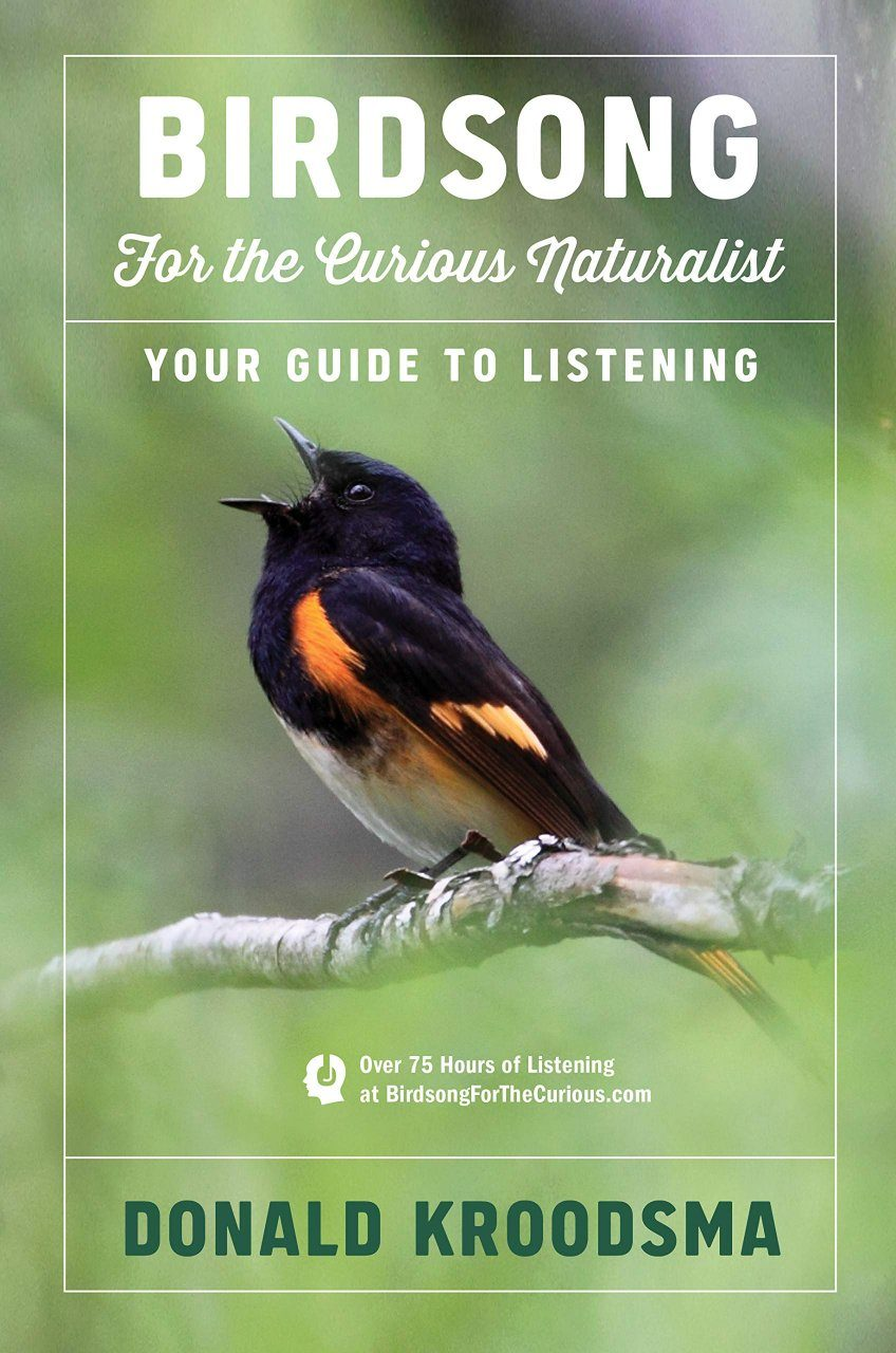 Birdsong for the Curious Naturalist