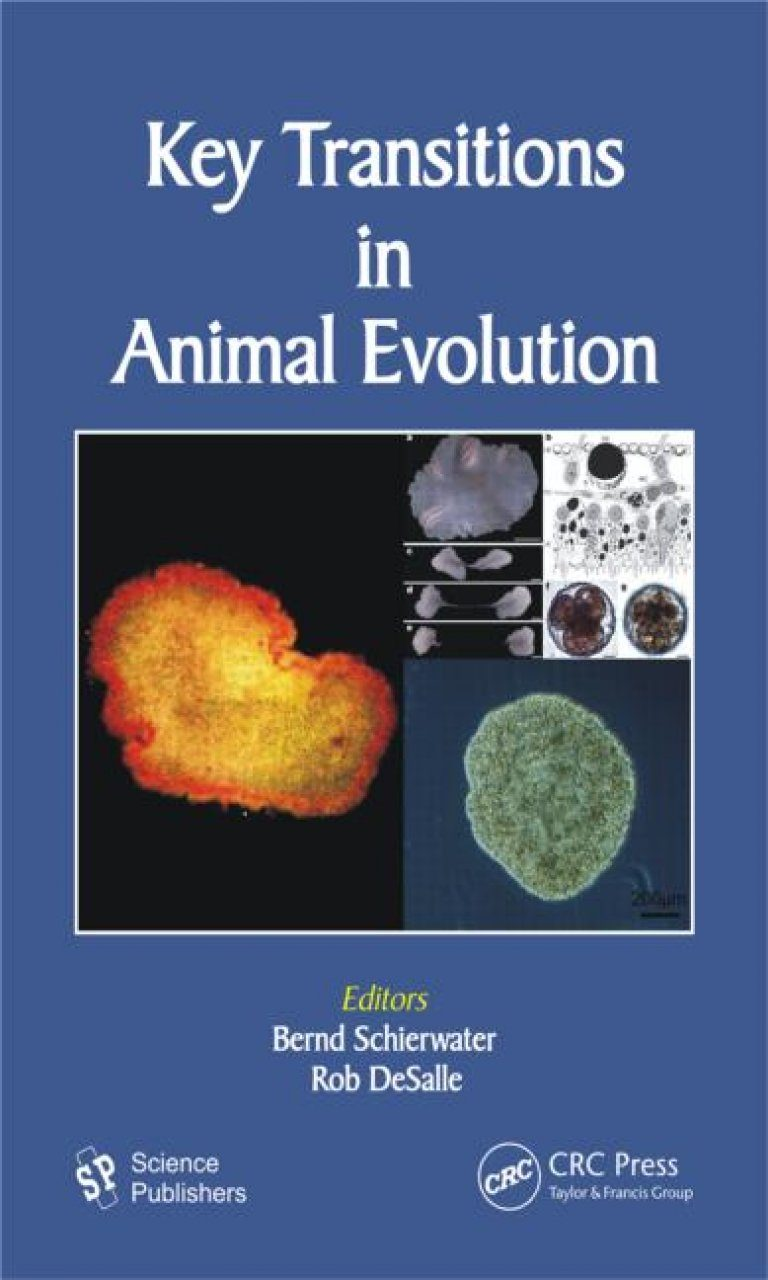 Key Transitions in Animal Evolution