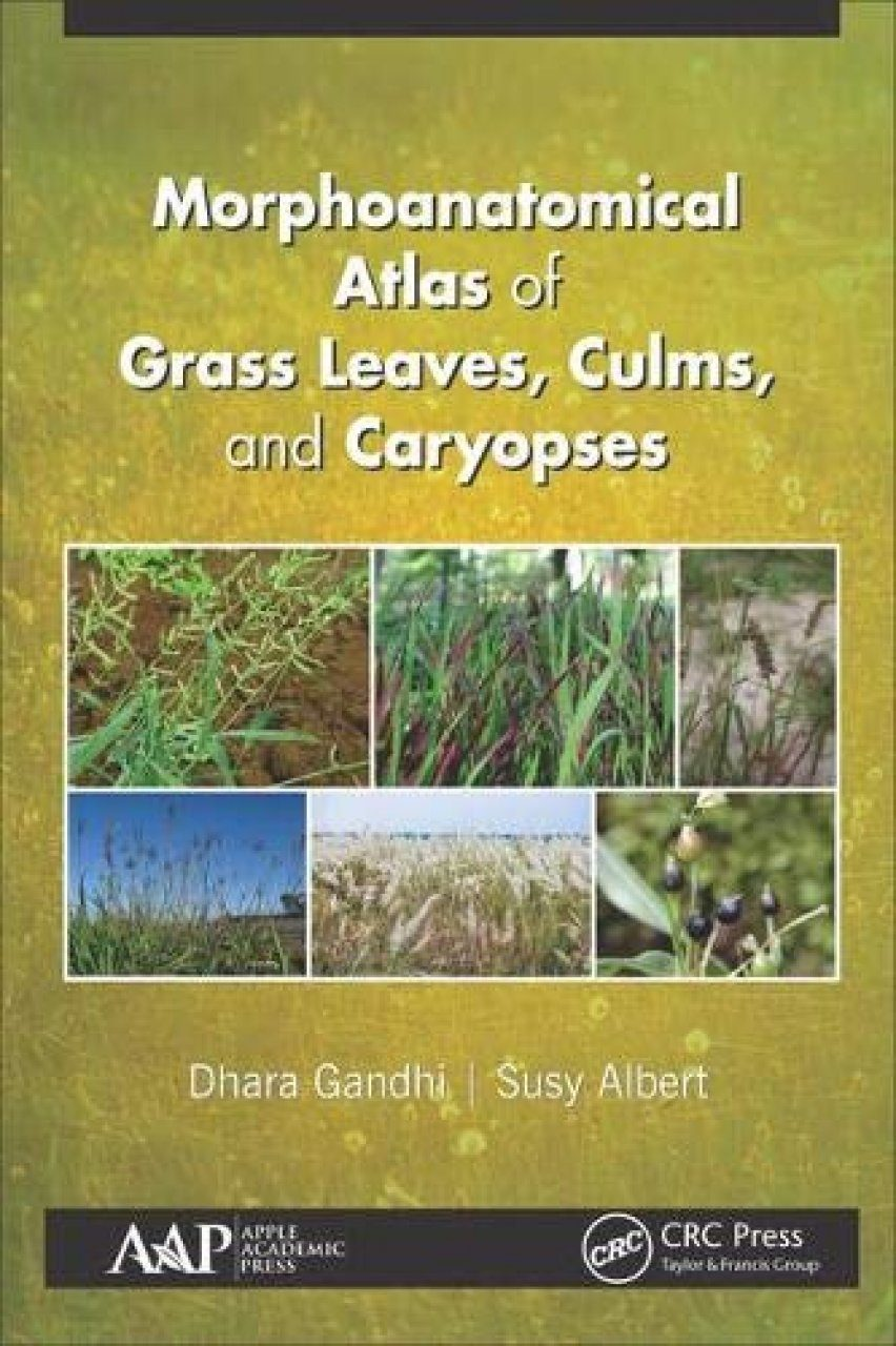 Morphoanatomical Atlas of Grass Leaves, Culms, and Caryopses