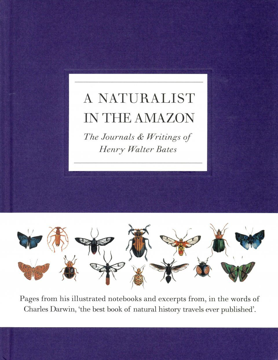 A Naturalist in the Amazon