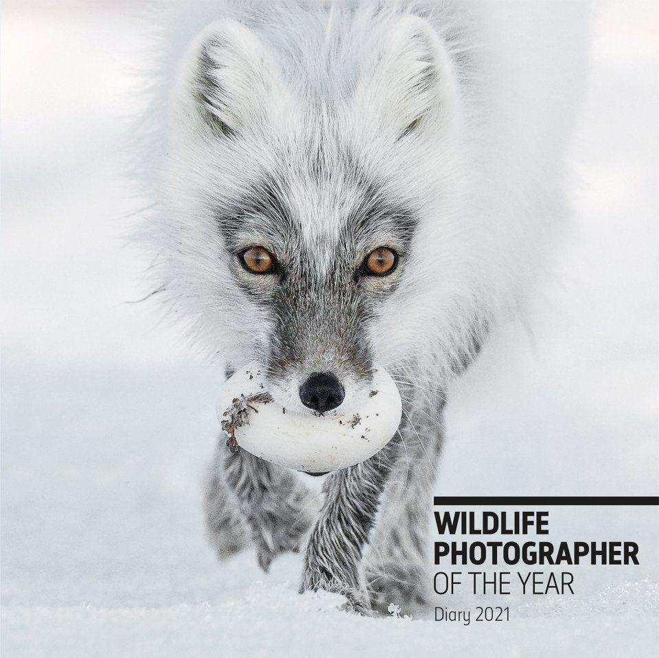 Wildlife Photographer of the Year Desk Diary 2021