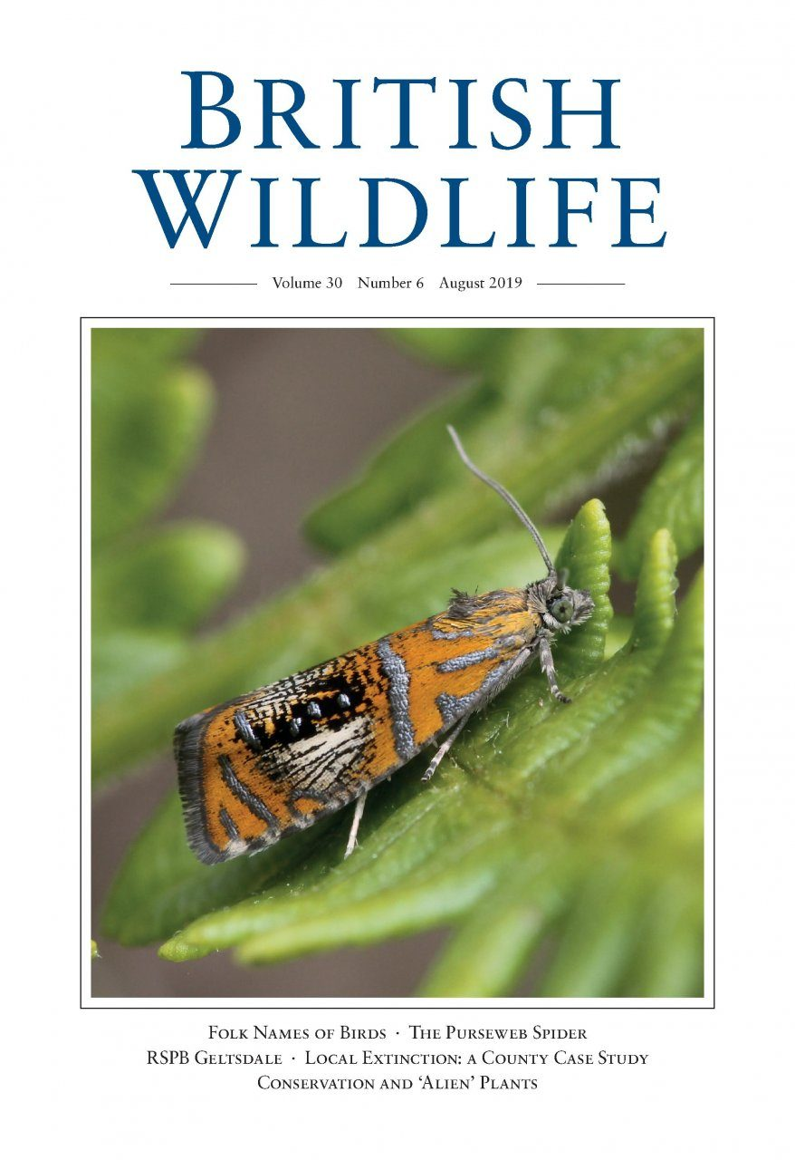 British Wildlife 30.6 August 2019