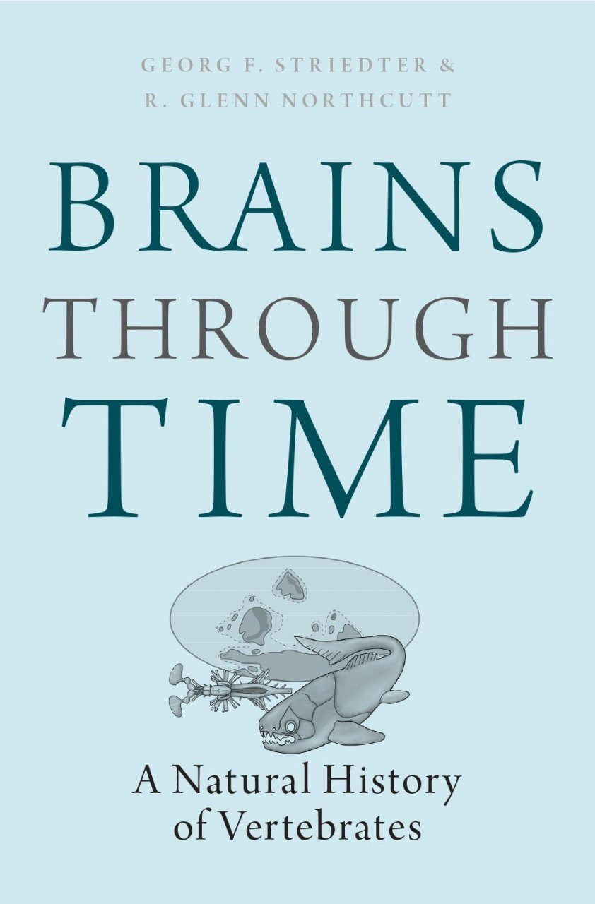 Brains Through Time
