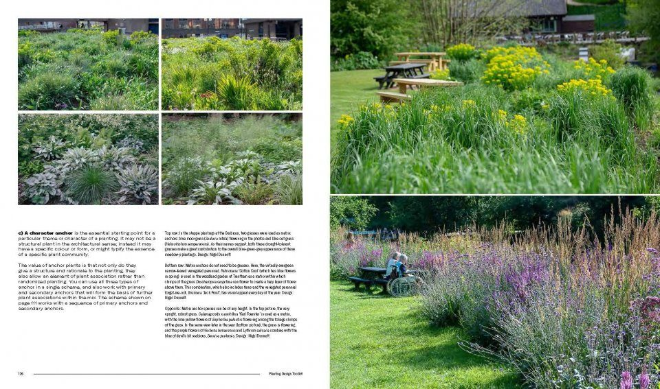 Naturalistic Planting Design: The Essential Guide | NHBS ...