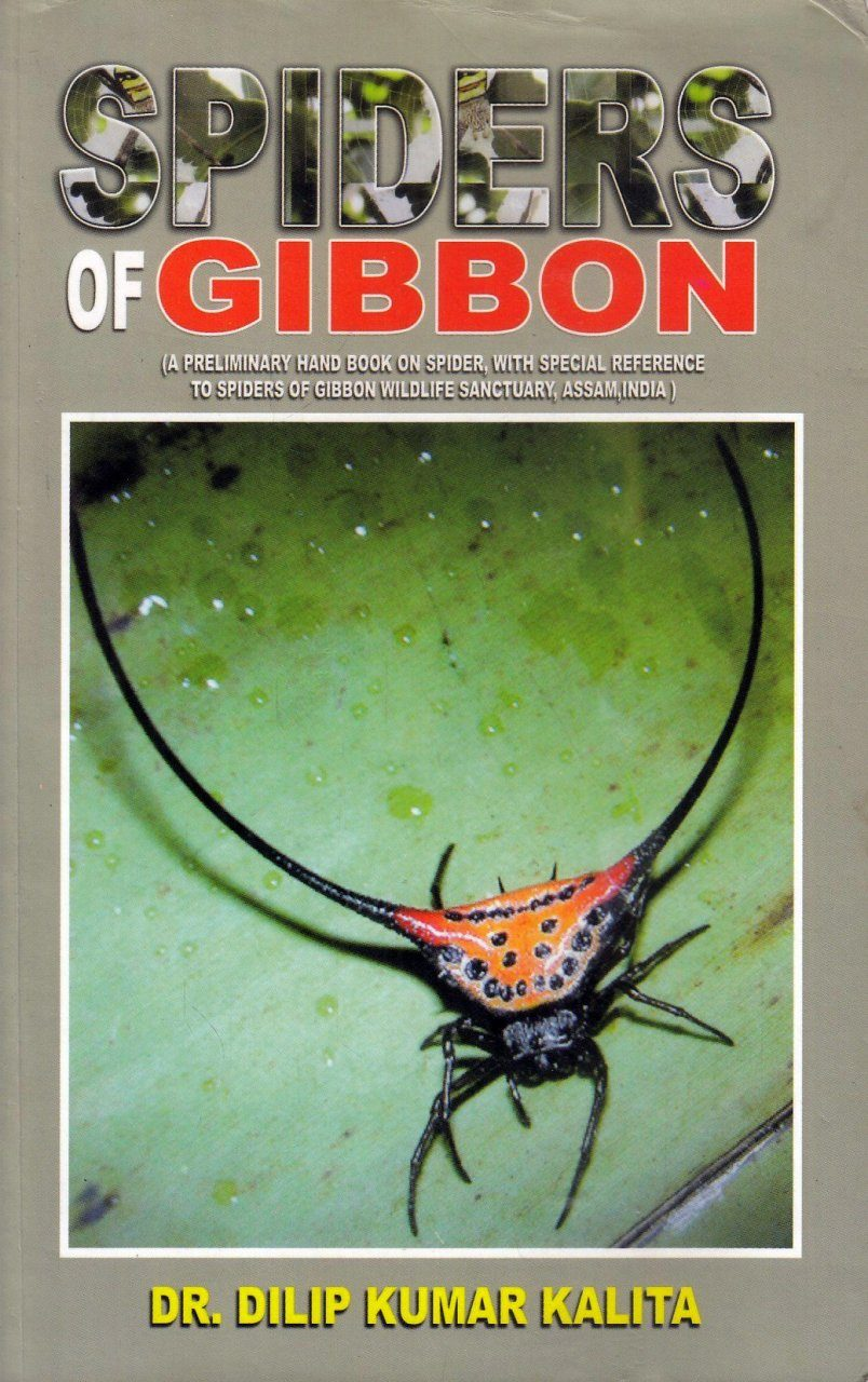 Spiders of Gibbon
