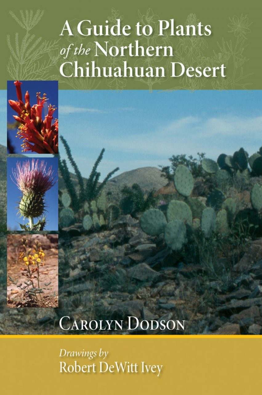 A Guide to Plants of the Northern Chihuahuan Desert