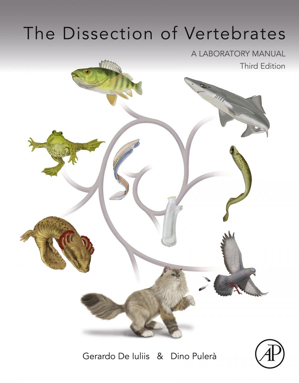 The Dissection Of Vertebrates  A Laboratory Manual