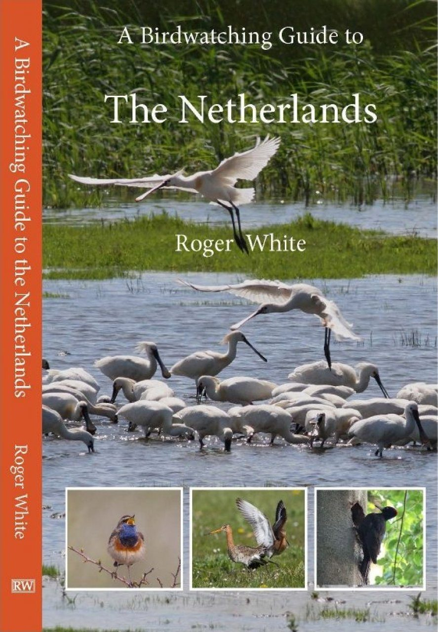 A Birdwatching Guide to the Netherlands