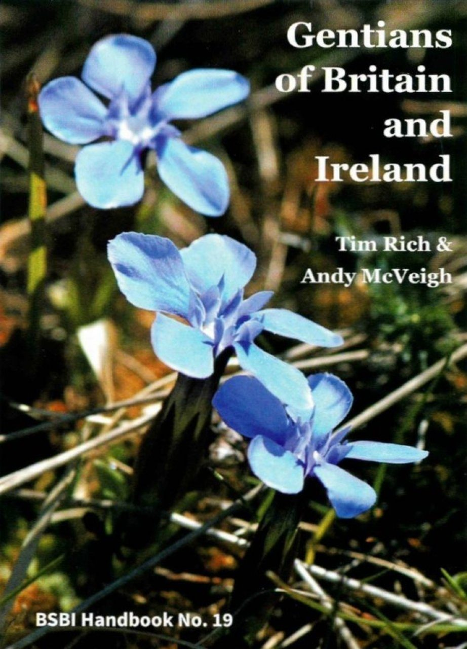 Gentians of Britain and Ireland