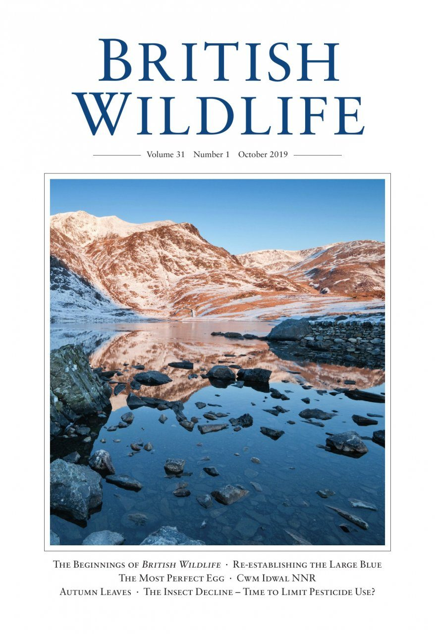 British Wildlife 31.1 October 2019