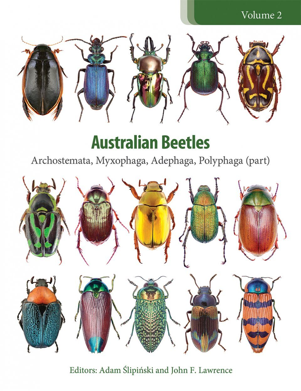 Australian Beetles, Volume 2