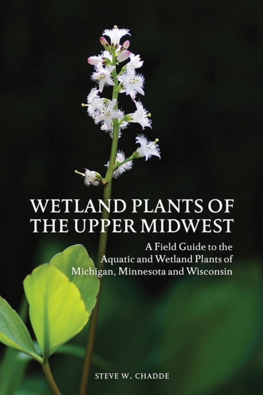 Wetland Plants of the Upper Midwest