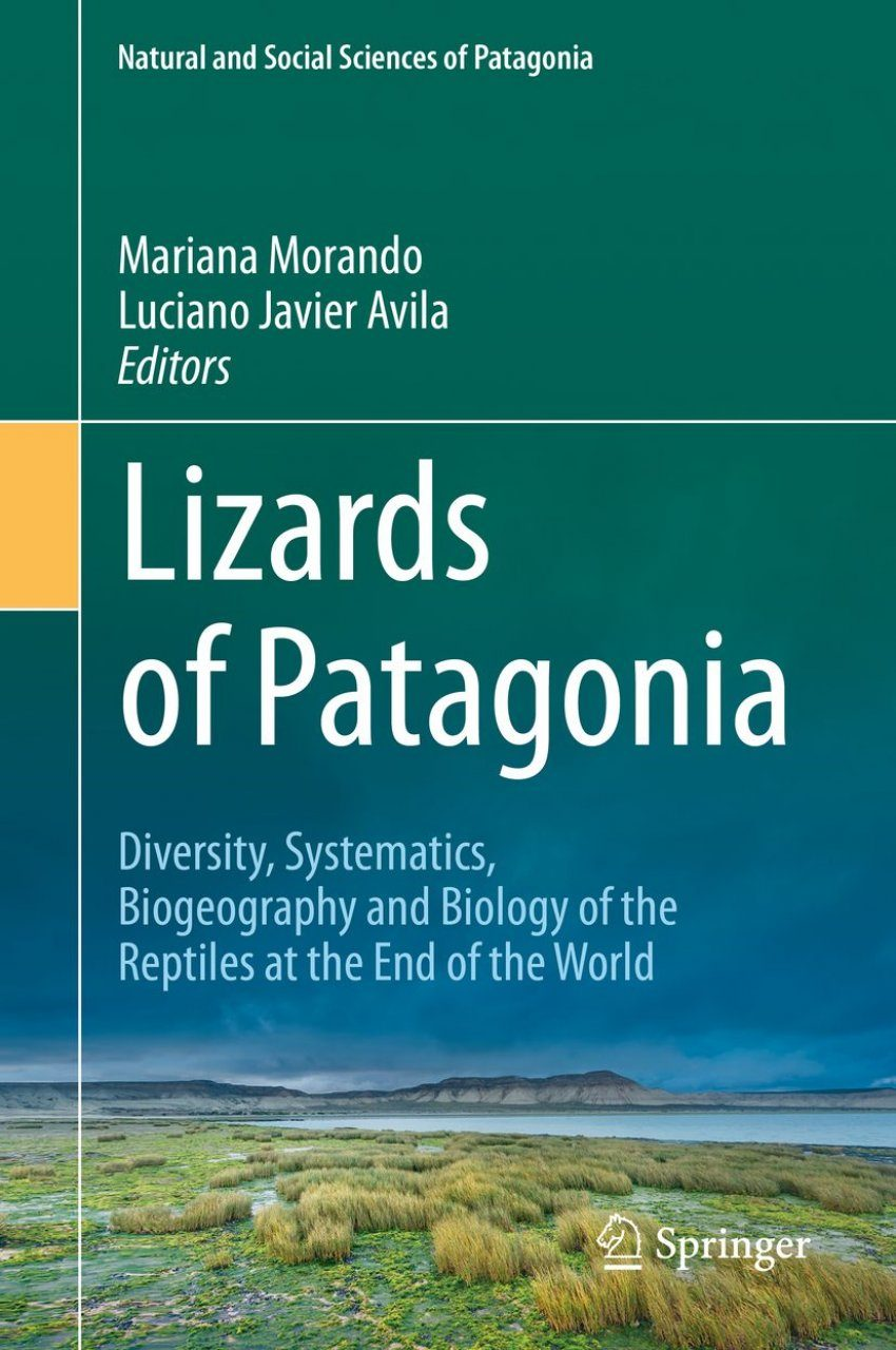 Lizards of Patagonia