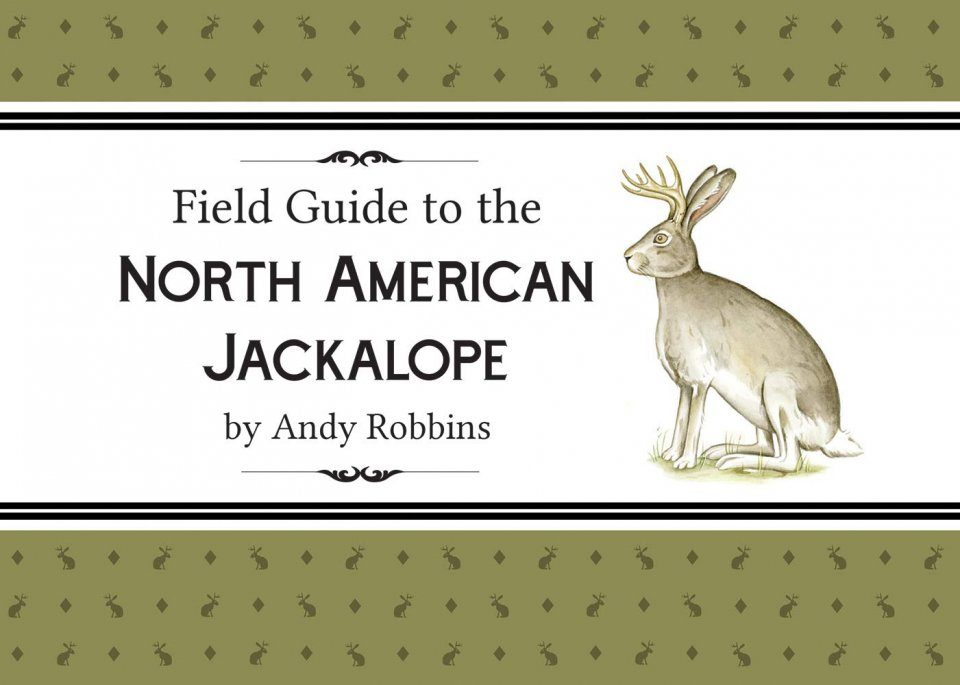 Field Guide to the North American Jackalope