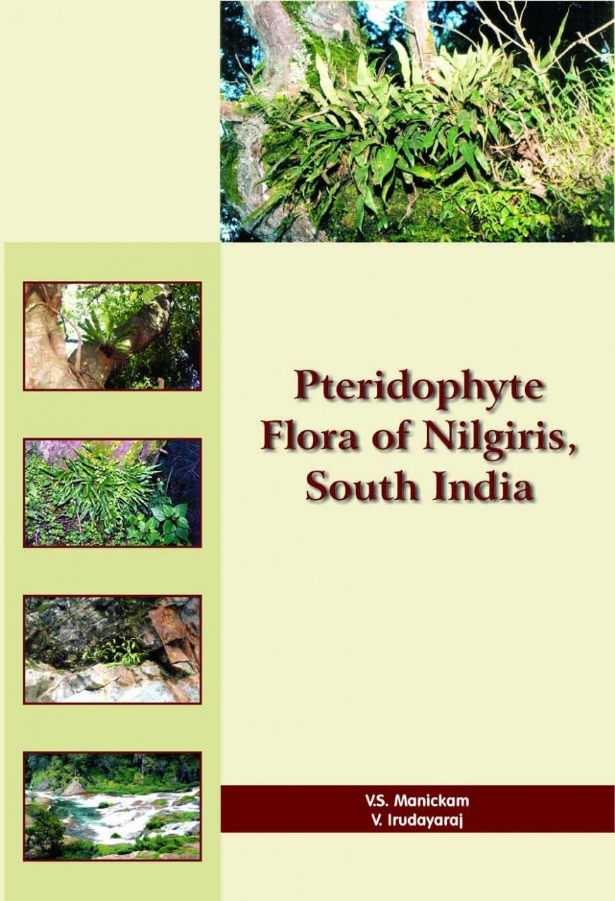 Pteridophyte Flora of Nilgiris, South India
