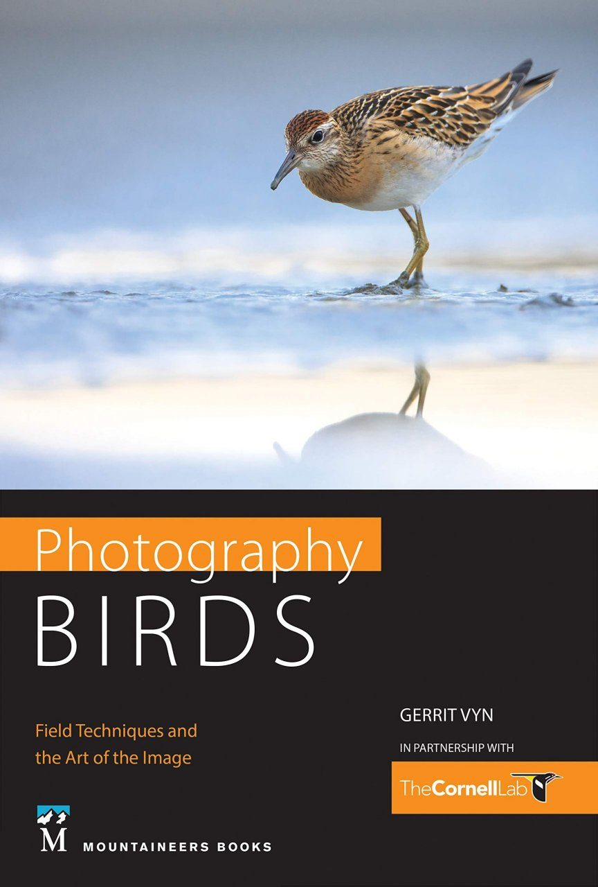 Photography: Birds