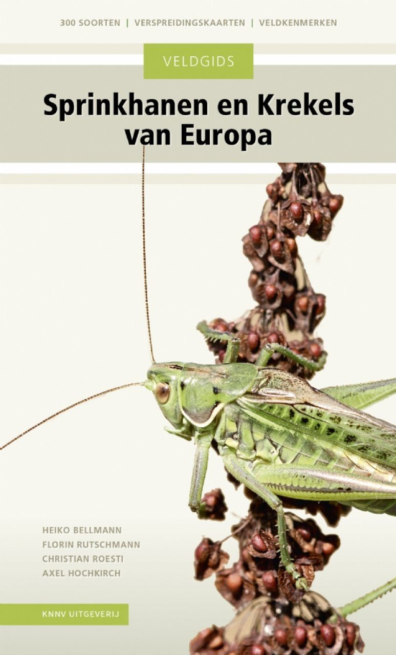 Veldgids Sprinkhanen en Krekels van Europa [Field Guide to the Grasshoppers and Crickets of Europe]