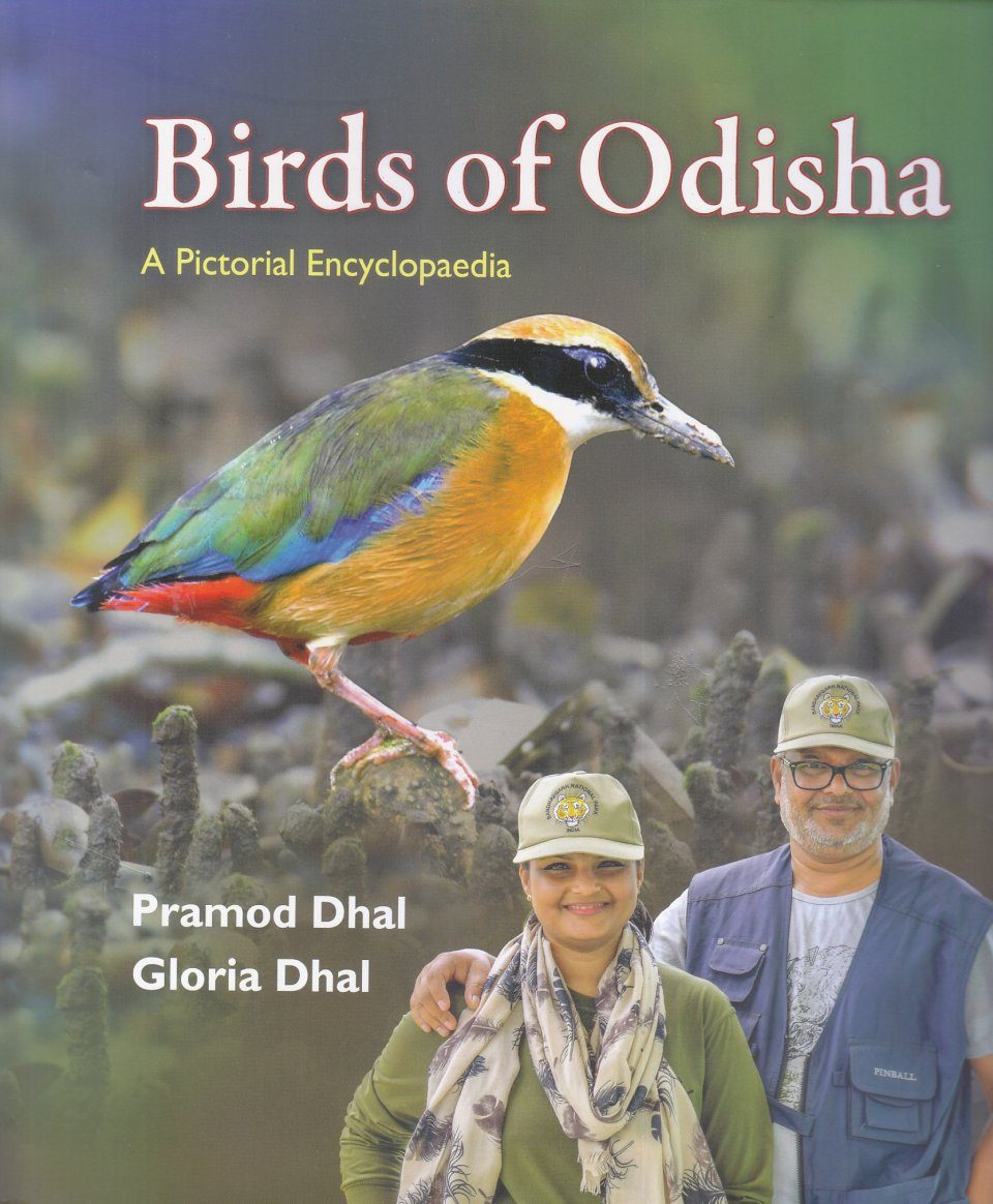 Birds of Odisha