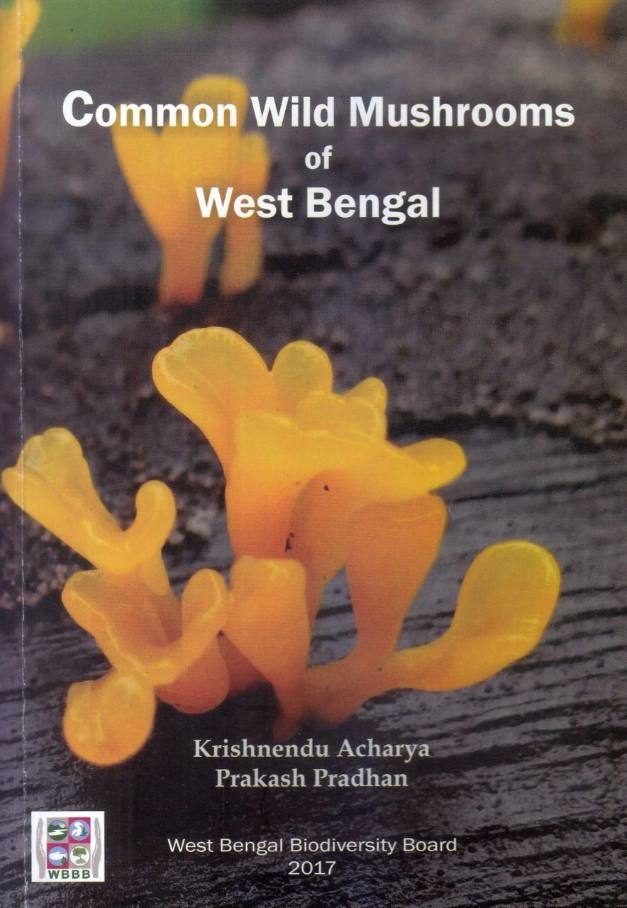 Common Wild Mushrooms of West Bengal