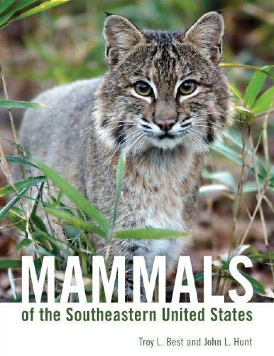 Mammals of the Southeastern United States