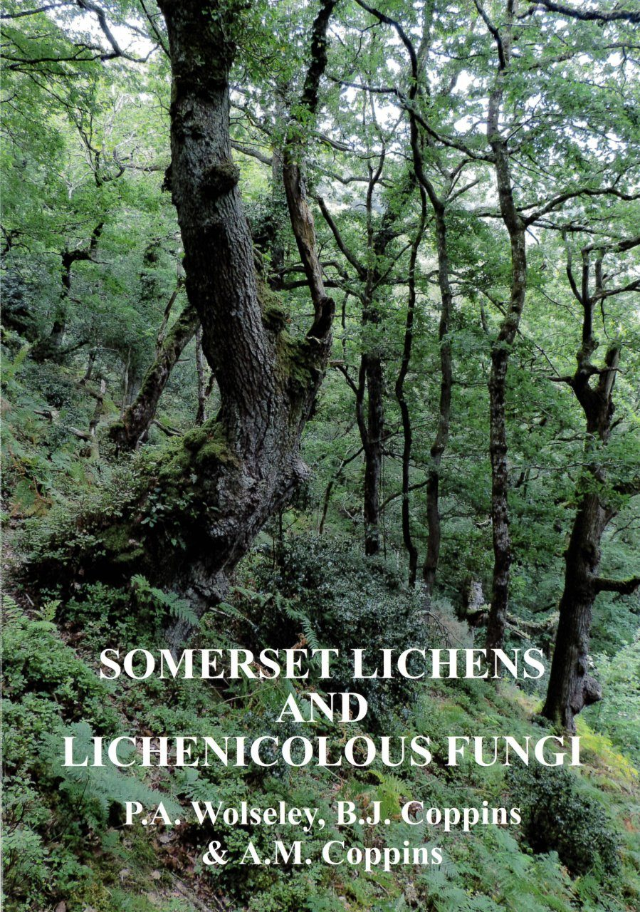 Somerset Lichens and Lichenicolous Fungi